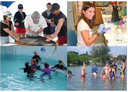 internships-for-graduates